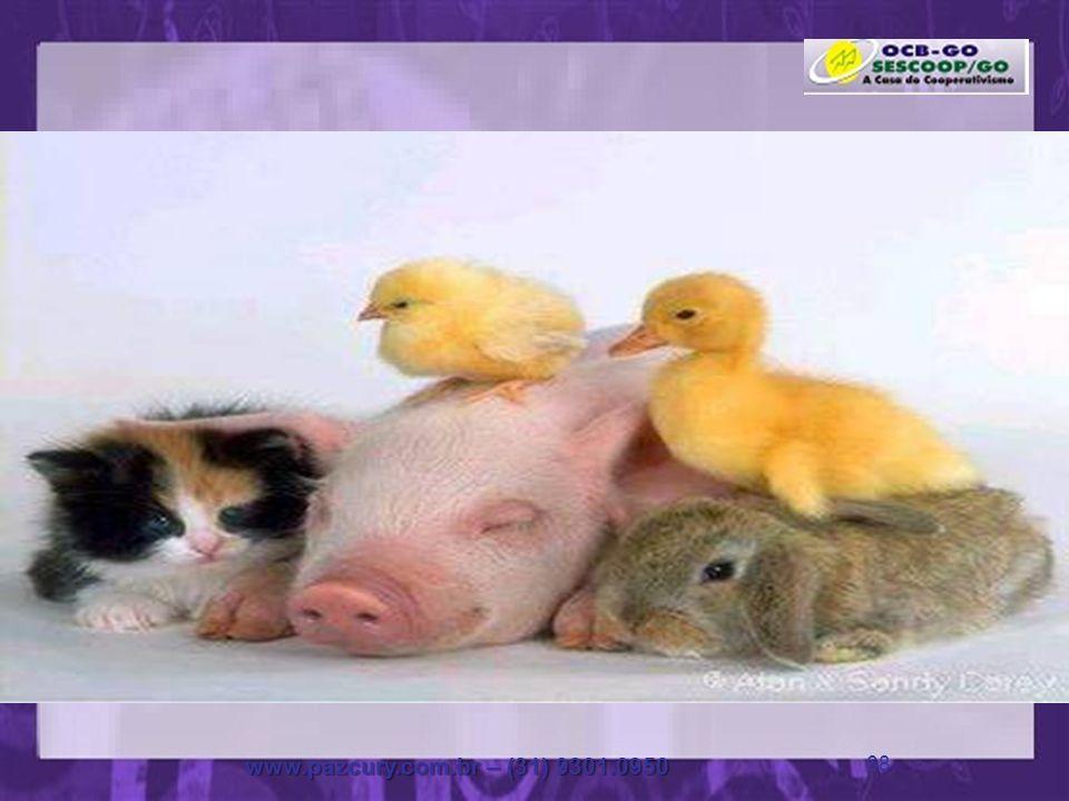 www.pazcury.com.br – (31) 9301.0950