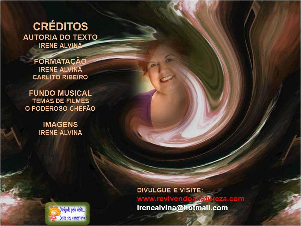 CRÉDITOS AUTORIA DO TEXTO FORMATAÇÃO FUNDO MUSICAL IMAGENS