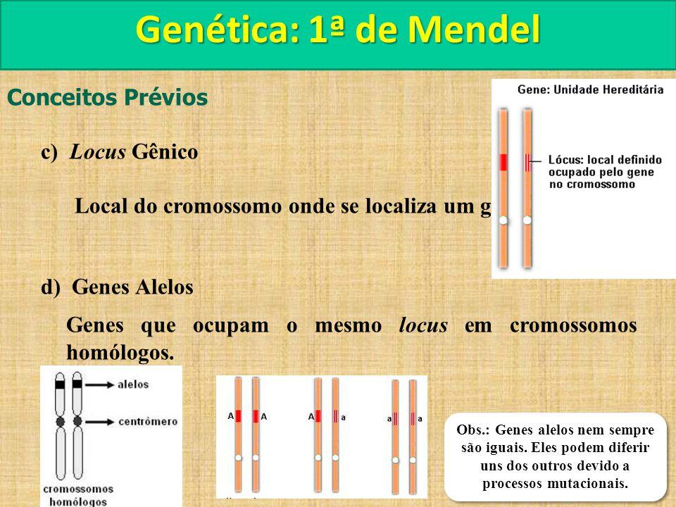 Genética: 1ª de Mendel Conceitos Prévios c) Locus Gênico