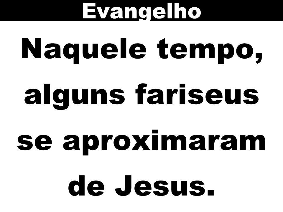 Naquele tempo, alguns fariseus se aproximaram de Jesus.