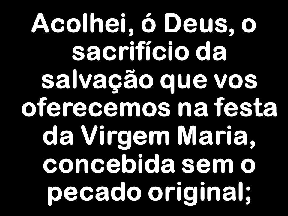 Acolhei, ó Deus, o sacrifício da salvação que vos oferecemos na festa da Virgem Maria, concebida sem o pecado original;