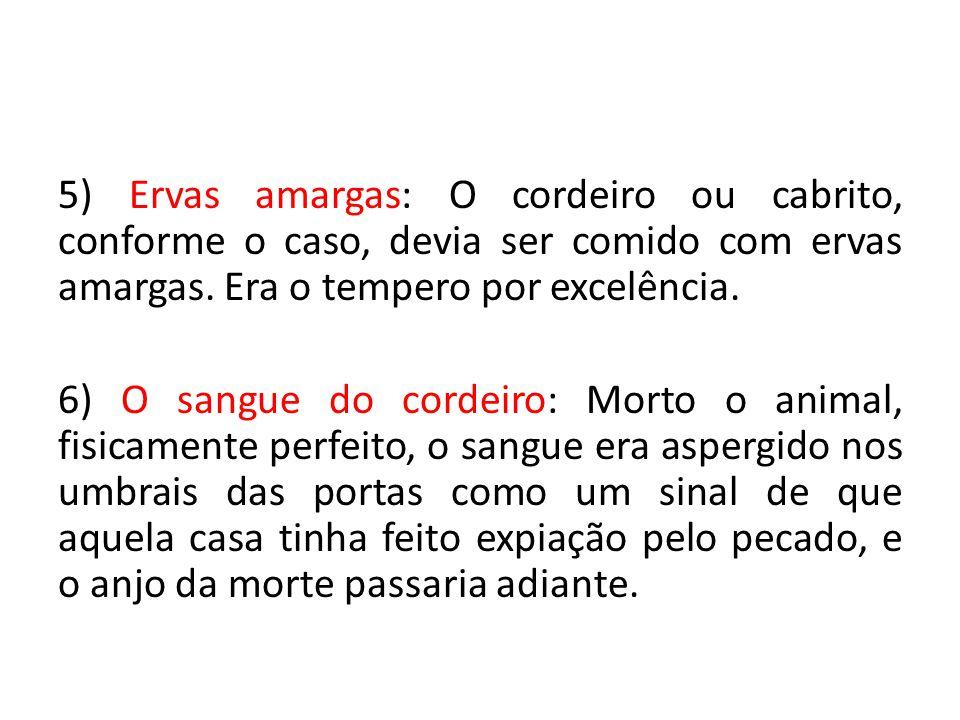 5) Ervas amargas: O cordeiro ou cabrito, conforme o caso, devia ser comido com ervas amargas. Era o tempero por excelência.
