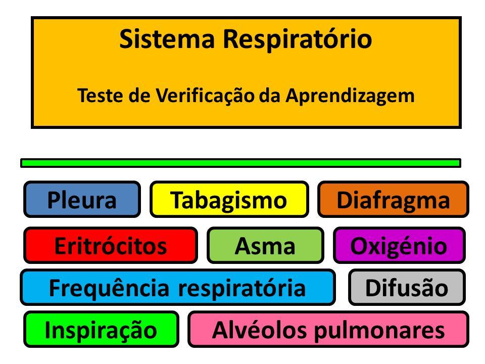 Teste de Verificação da Aprendizagem Frequência respiratória