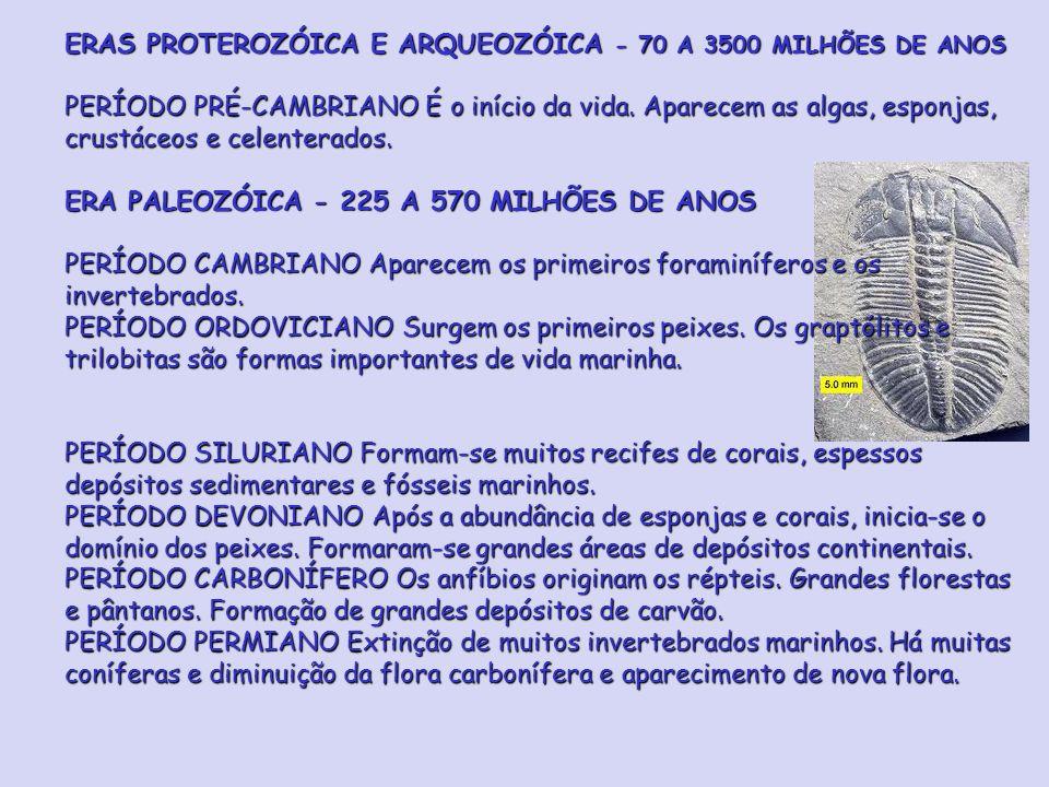 ERAS PROTEROZÓICA E ARQUEOZÓICA - 70 A 3500 MILHÕES DE ANOS