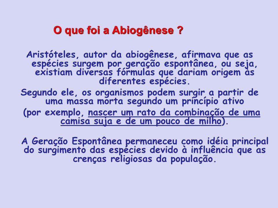O que foi a Abiogênese