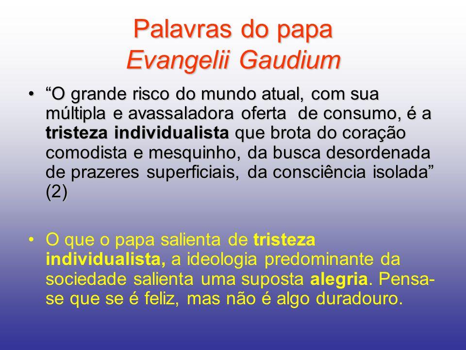 Palavras do papa Evangelii Gaudium