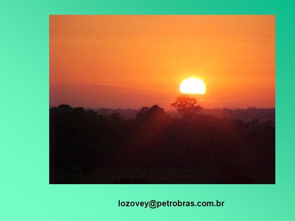 lozovey@petrobras.com.br
