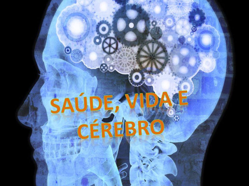 Circuito Saude E Vida : Saúde vida e cérebro ppt carregar