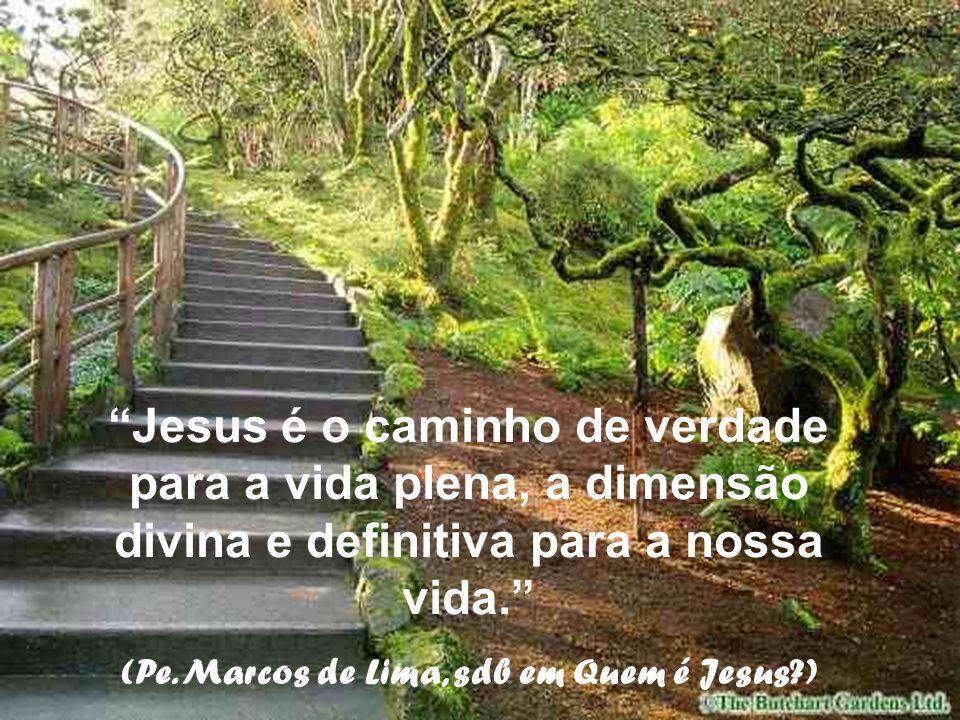 (Pe. Marcos de Lima, sdb em Quem é Jesus )