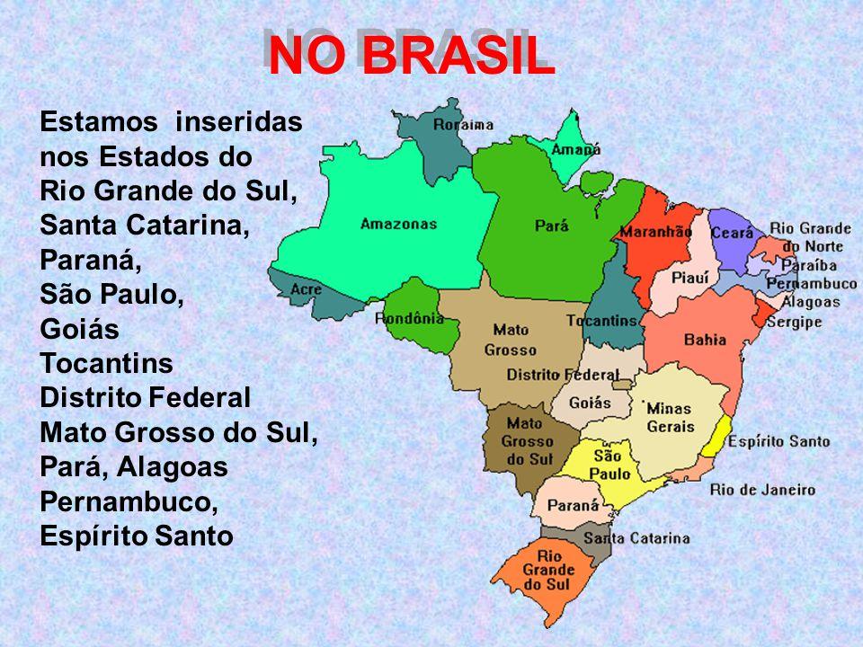 NO BRASIL Estamos inseridas nos Estados do Rio Grande do Sul,