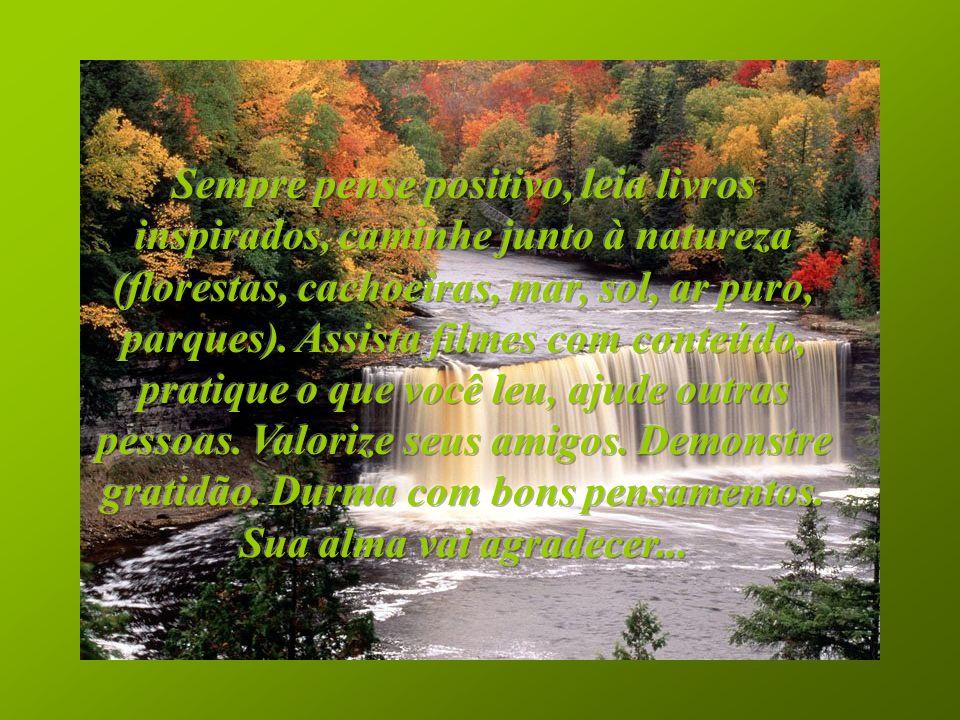 Sempre pense positivo, leia livros inspirados, caminhe junto à natureza (florestas, cachoeiras, mar, sol, ar puro, parques).