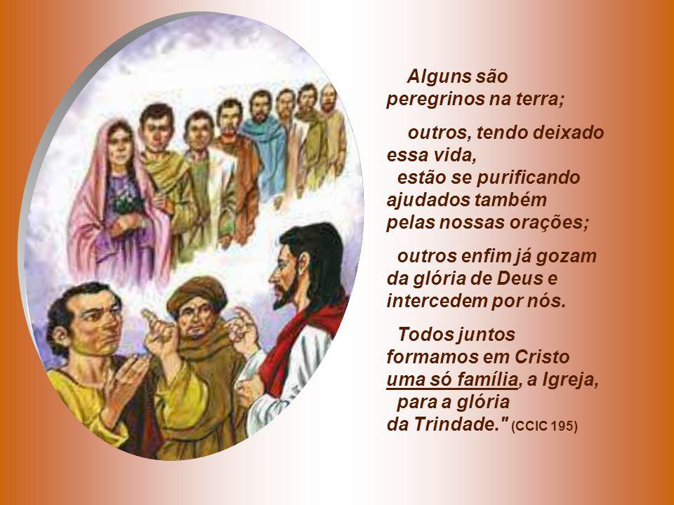 Alguns são peregrinos na terra; outros, tendo deixado essa vida, estão se purificando ajudados também pelas nossas orações;