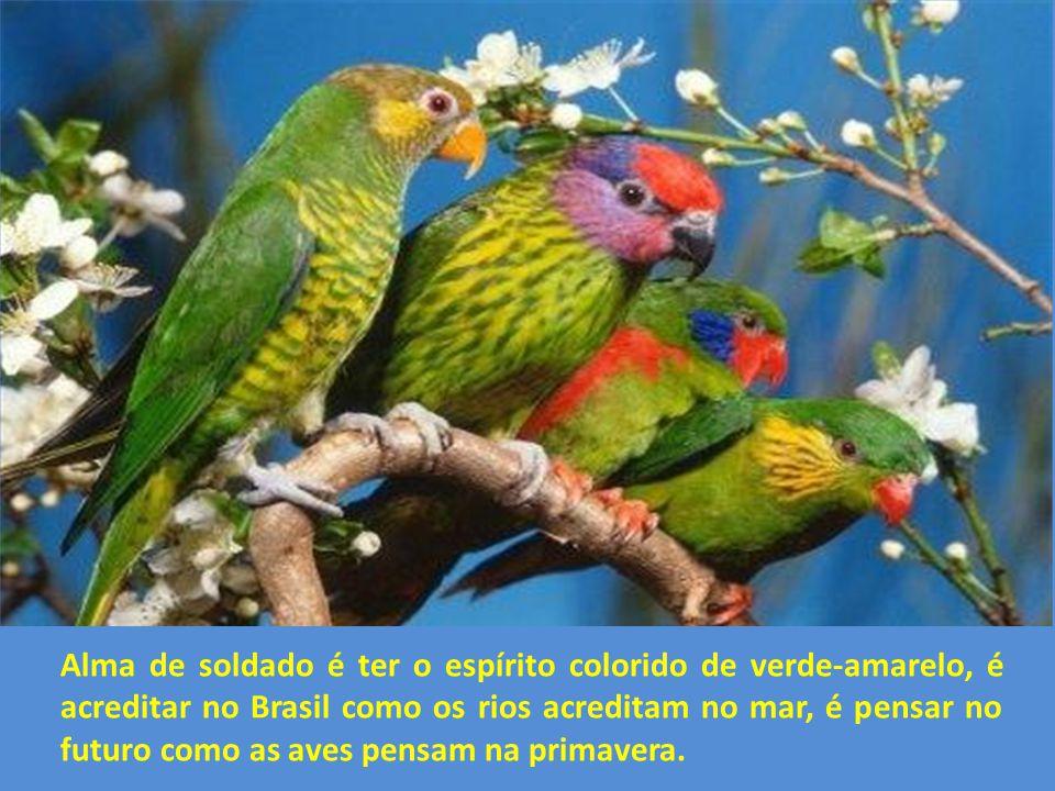 Alma de soldado é ter o espírito colorido de verde-amarelo, é acreditar no Brasil como os rios acreditam no mar, é pensar no futuro como as aves pensam na primavera.