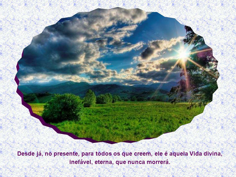 Desde já, no presente, para todos os que creem, ele é aquela Vida divina, inefável, eterna, que nunca morrerá.