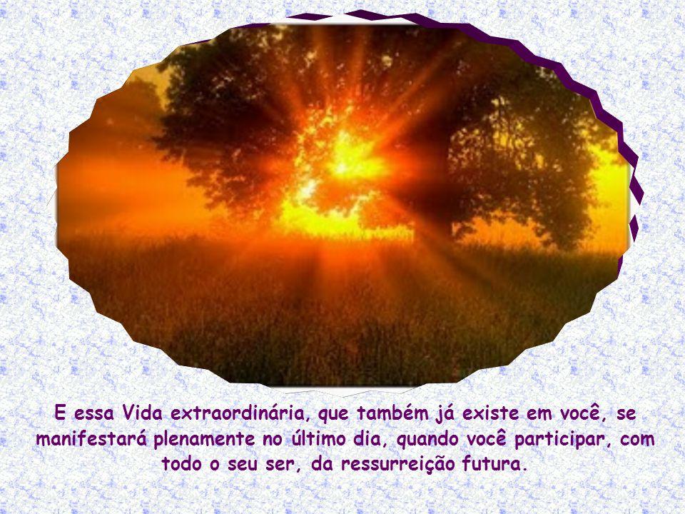 E essa Vida extraordinária, que também já existe em você, se manifestará plenamente no último dia, quando você participar, com todo o seu ser, da ressurreição futura.