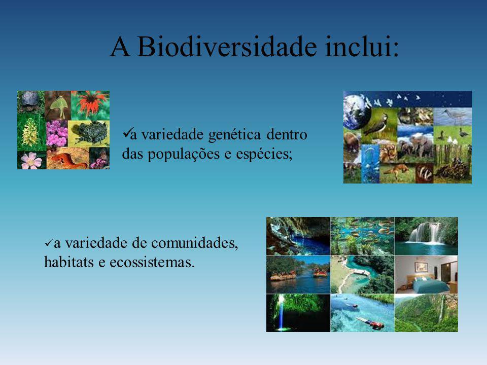 A Biodiversidade inclui: