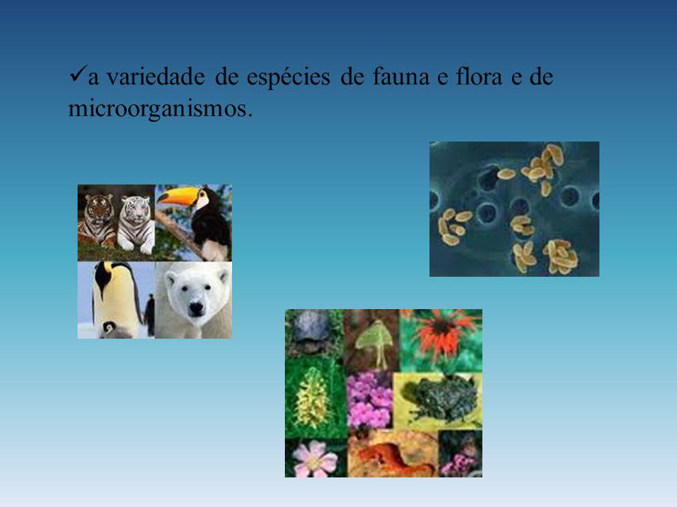 a variedade de espécies de fauna e flora e de microorganismos.