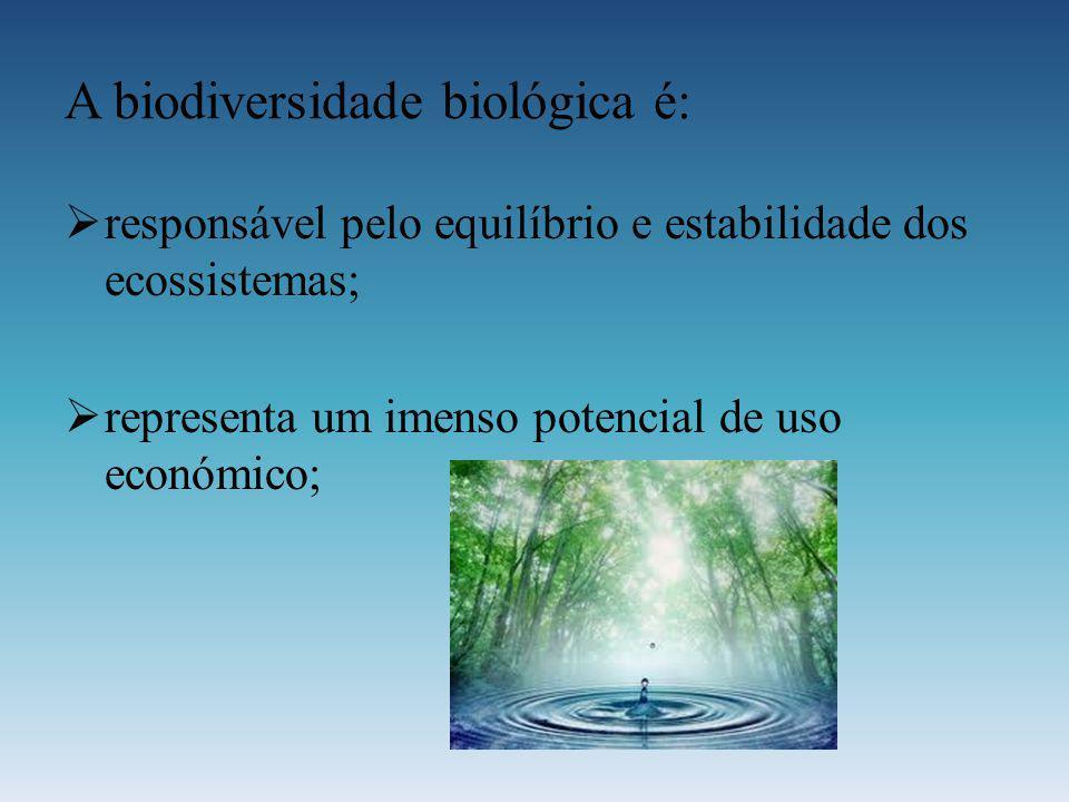 A biodiversidade biológica é: