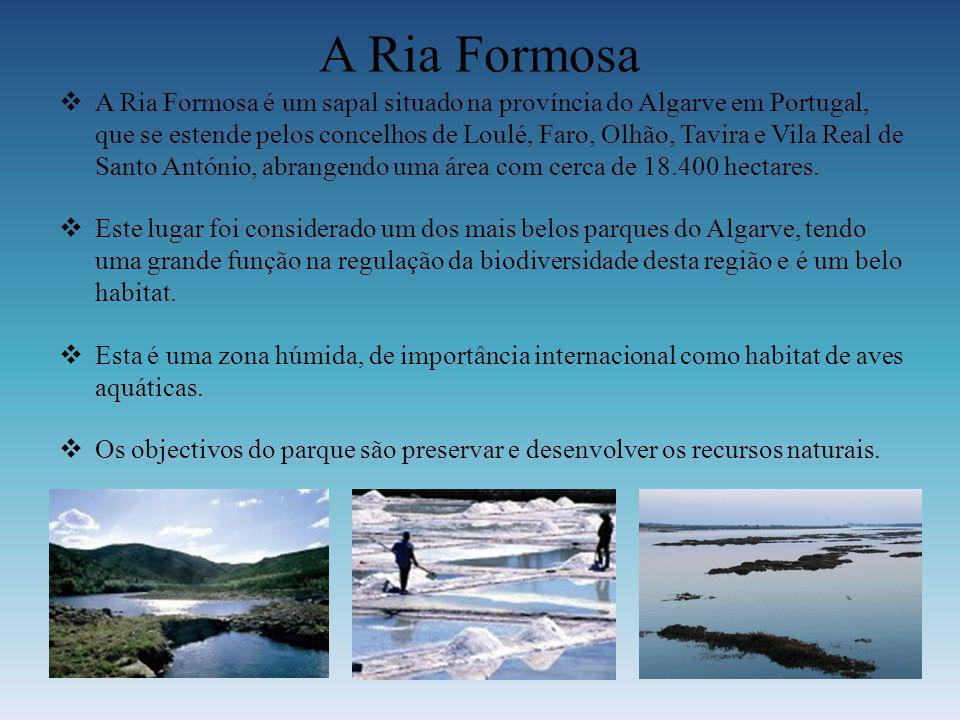 A Ria Formosa
