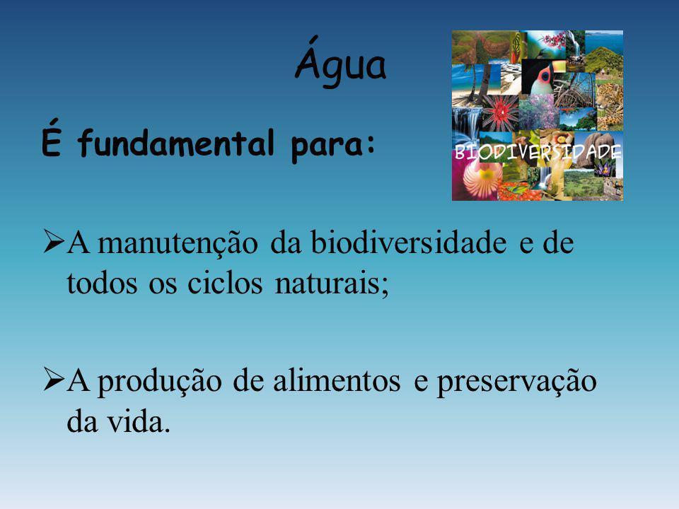 Água É fundamental para: