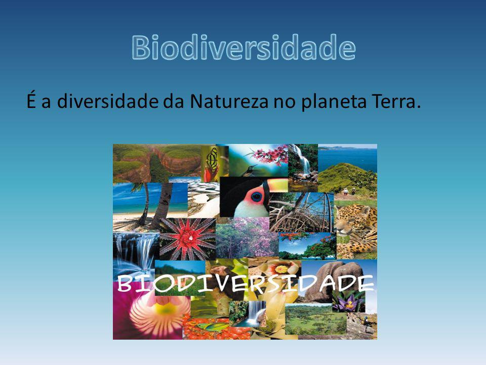 Biodiversidade É a diversidade da Natureza no planeta Terra.