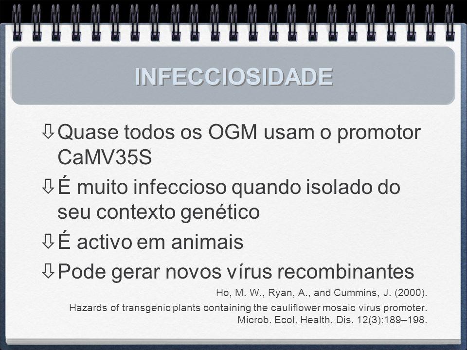 INFECCIOSIDADE Quase todos os OGM usam o promotor CaMV35S