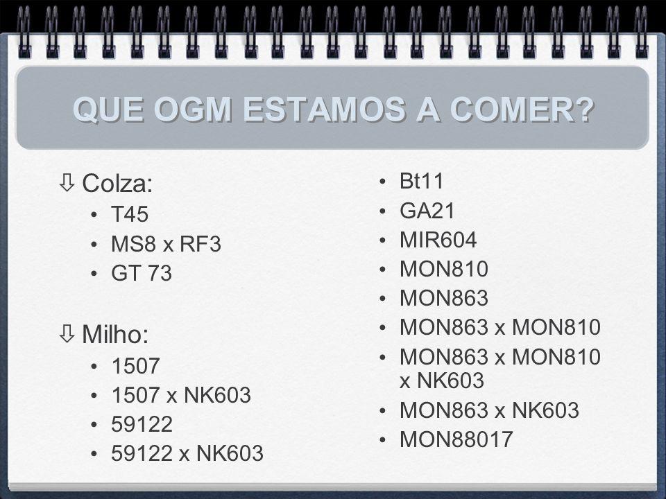 QUE OGM ESTAMOS A COMER Colza: Milho: Bt11 T45 GA21 MIR604 MS8 x RF3