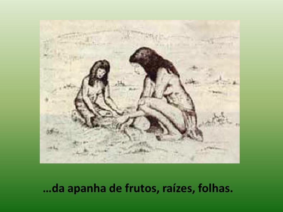 …da apanha de frutos, raízes, folhas.