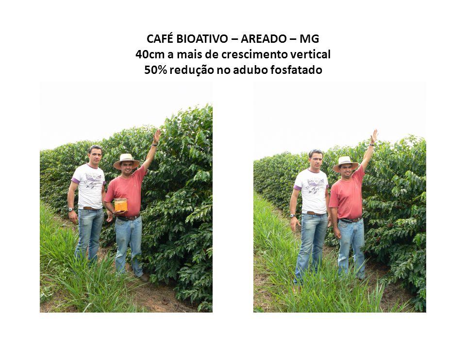 CAFÉ BIOATIVO – AREADO – MG 40cm a mais de crescimento vertical 50% redução no adubo fosfatado