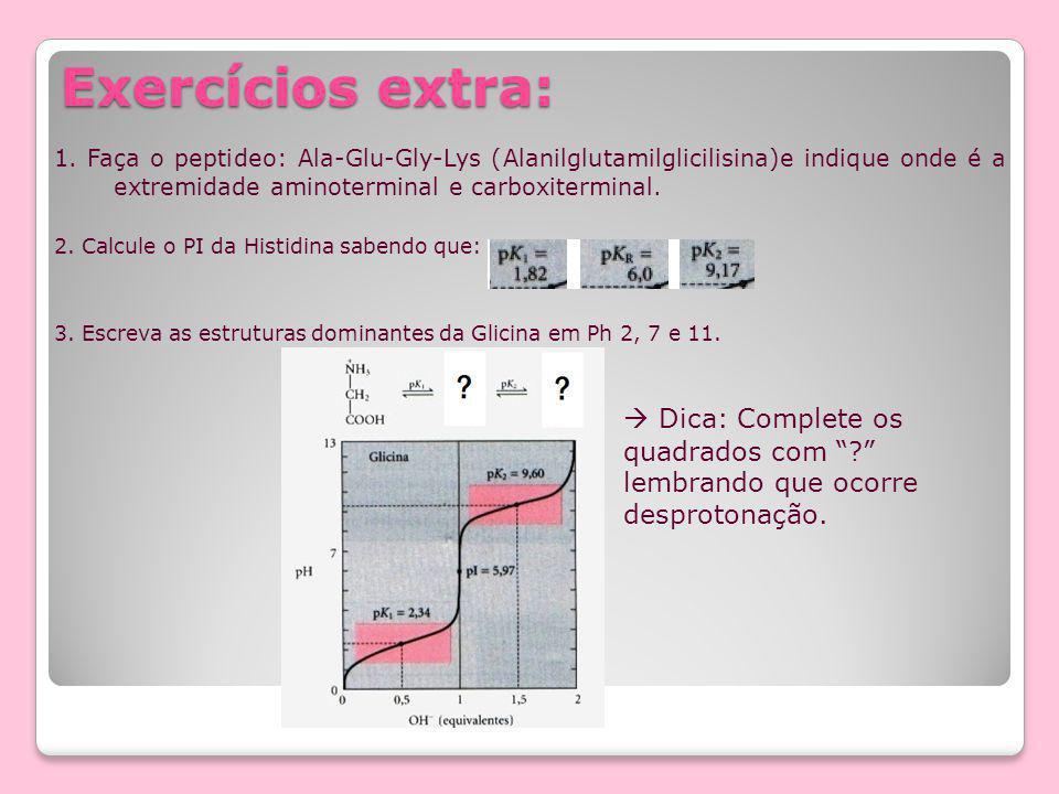 Exercícios extra: 1. Faça o peptideo: Ala-Glu-Gly-Lys (Alanilglutamilglicilisina)e indique onde é a extremidade aminoterminal e carboxiterminal.