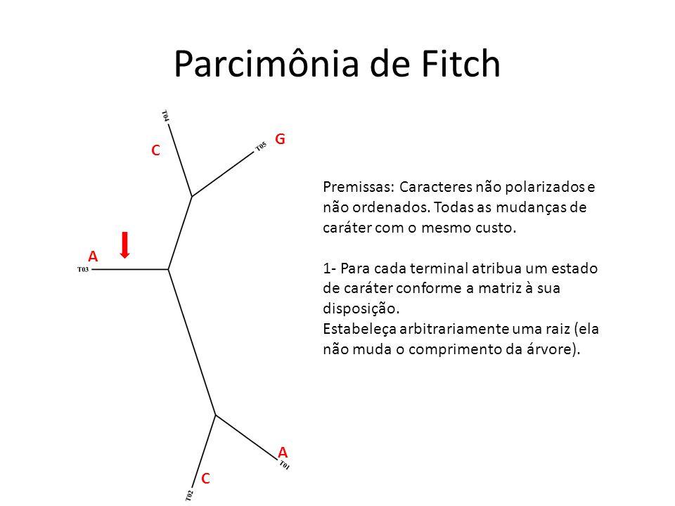 Parcimônia de Fitch G. C. Premissas: Caracteres não polarizados e não ordenados. Todas as mudanças de caráter com o mesmo custo.