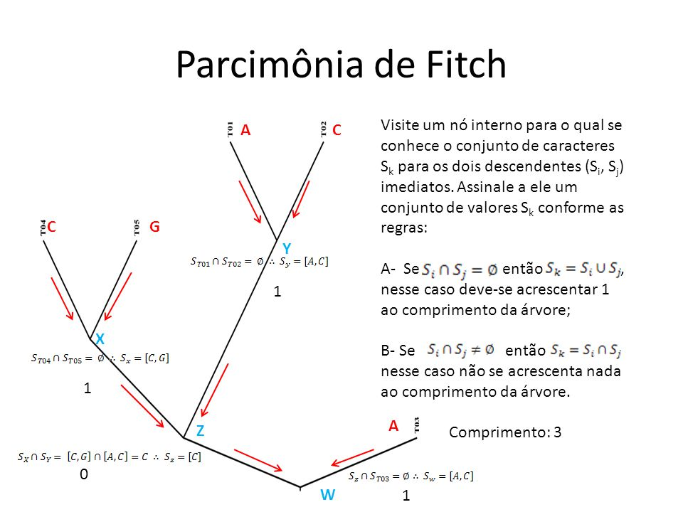 Parcimônia de Fitch