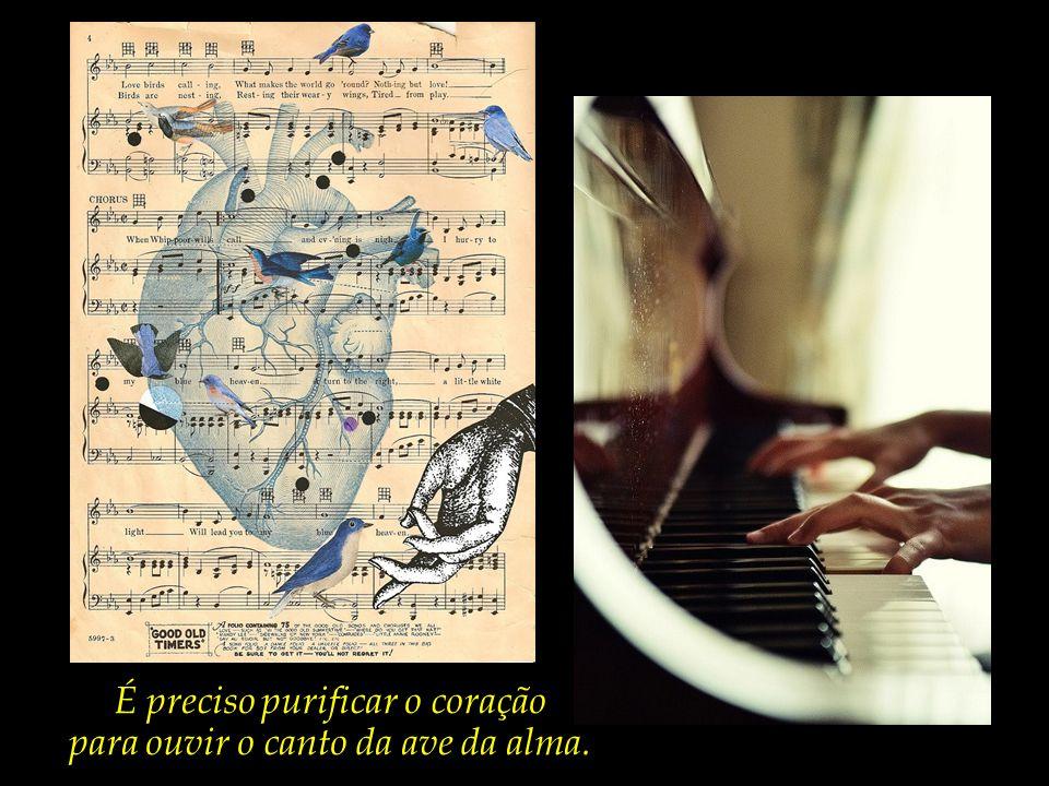É preciso purificar o coração para ouvir o canto da ave da alma.