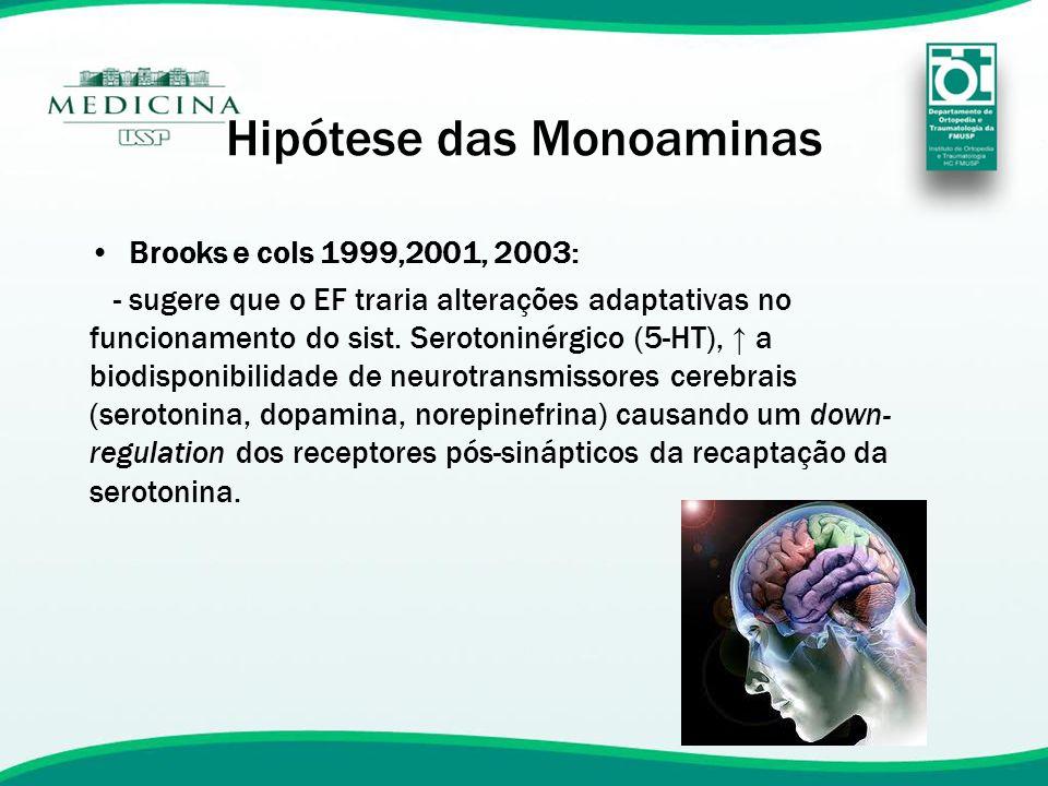 Hipótese das Monoaminas