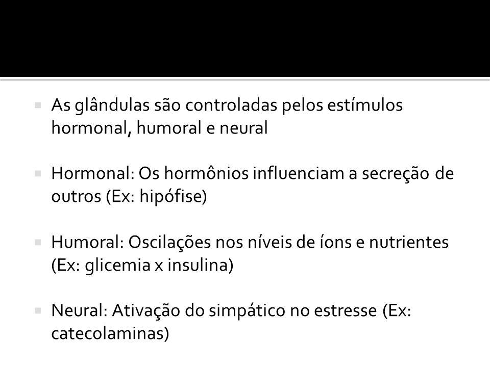 As glândulas são controladas pelos estímulos hormonal, humoral e neural