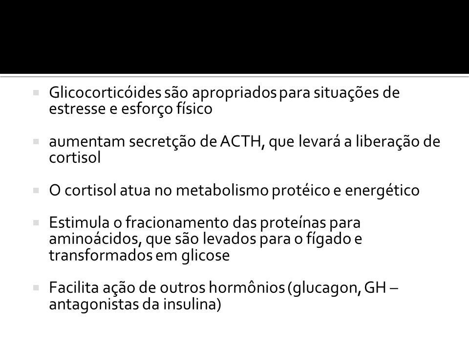 Glicocorticóides são apropriados para situações de estresse e esforço físico