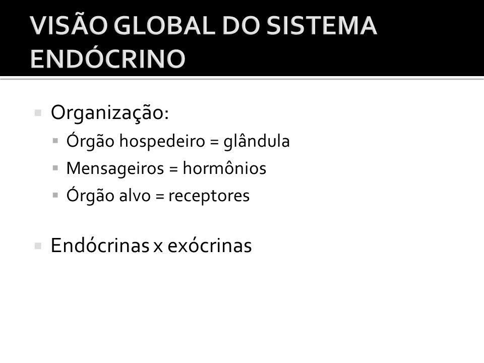 VISÃO GLOBAL DO SISTEMA ENDÓCRINO