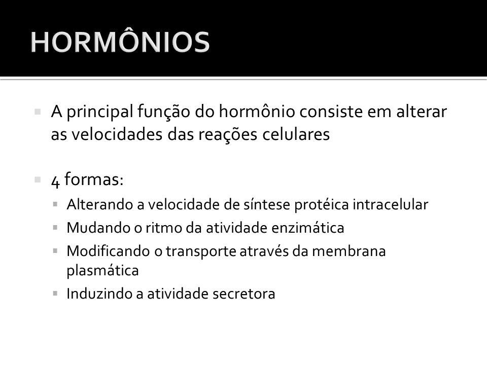 HORMÔNIOS A principal função do hormônio consiste em alterar as velocidades das reações celulares. 4 formas: