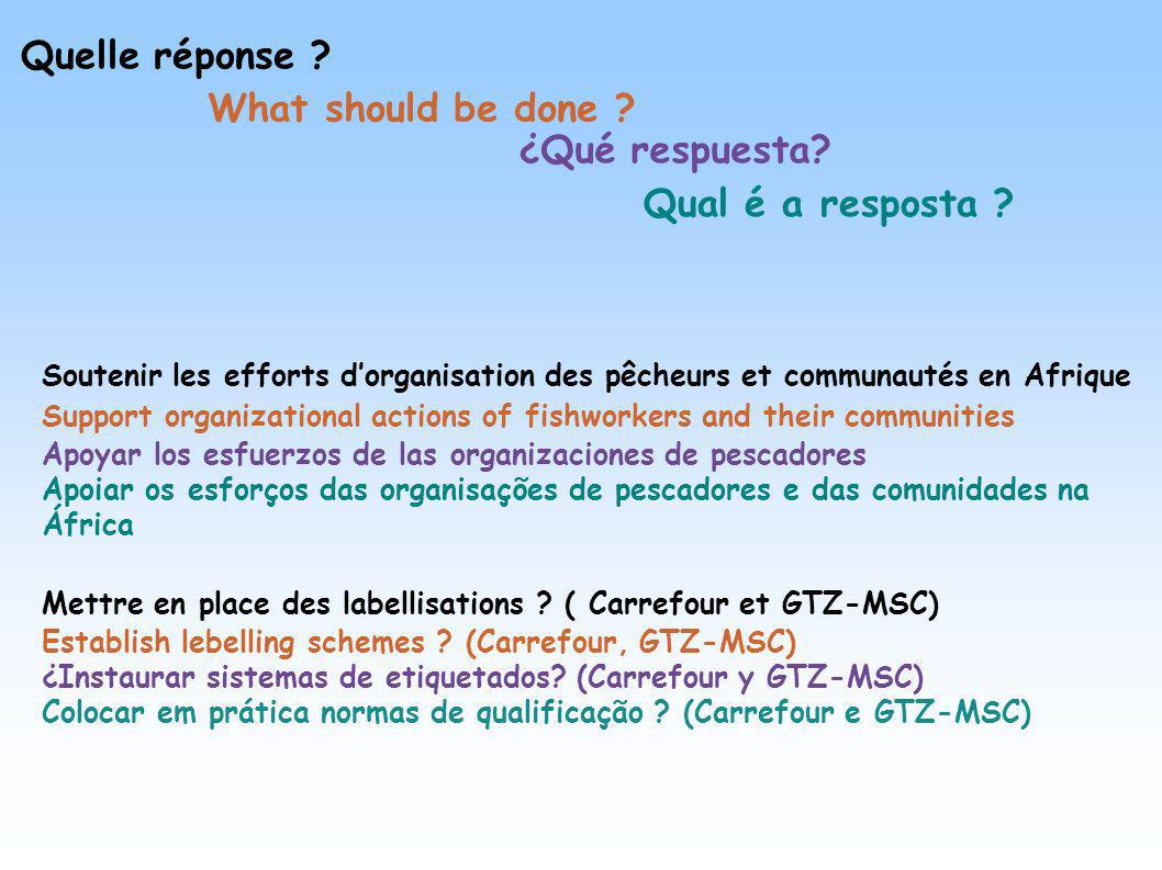 Quelle réponse What should be done ¿Qué respuesta