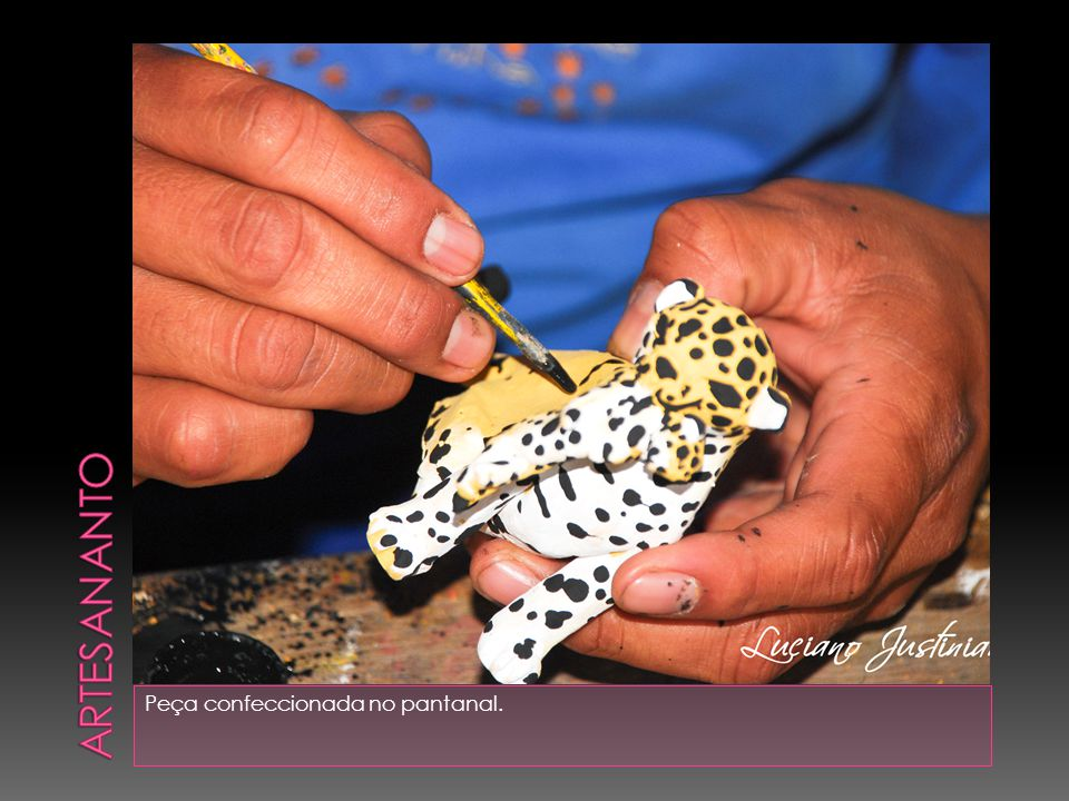 Artesananto Peça confeccionada no pantanal.