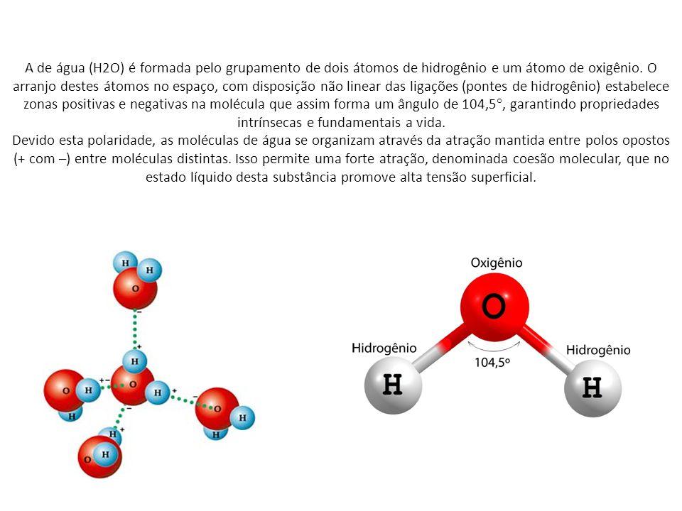 A de água (H2O) é formada pelo grupamento de dois átomos de hidrogênio e um átomo de oxigênio. O arranjo destes átomos no espaço, com disposição não linear das ligações (pontes de hidrogênio) estabelece zonas positivas e negativas na molécula que assim forma um ângulo de 104,5°, garantindo propriedades intrínsecas e fundamentais a vida.
