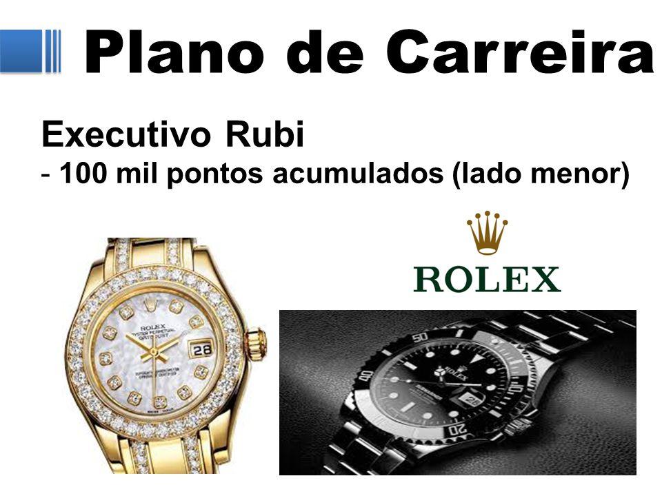 Plano de Carreira Executivo Rubi