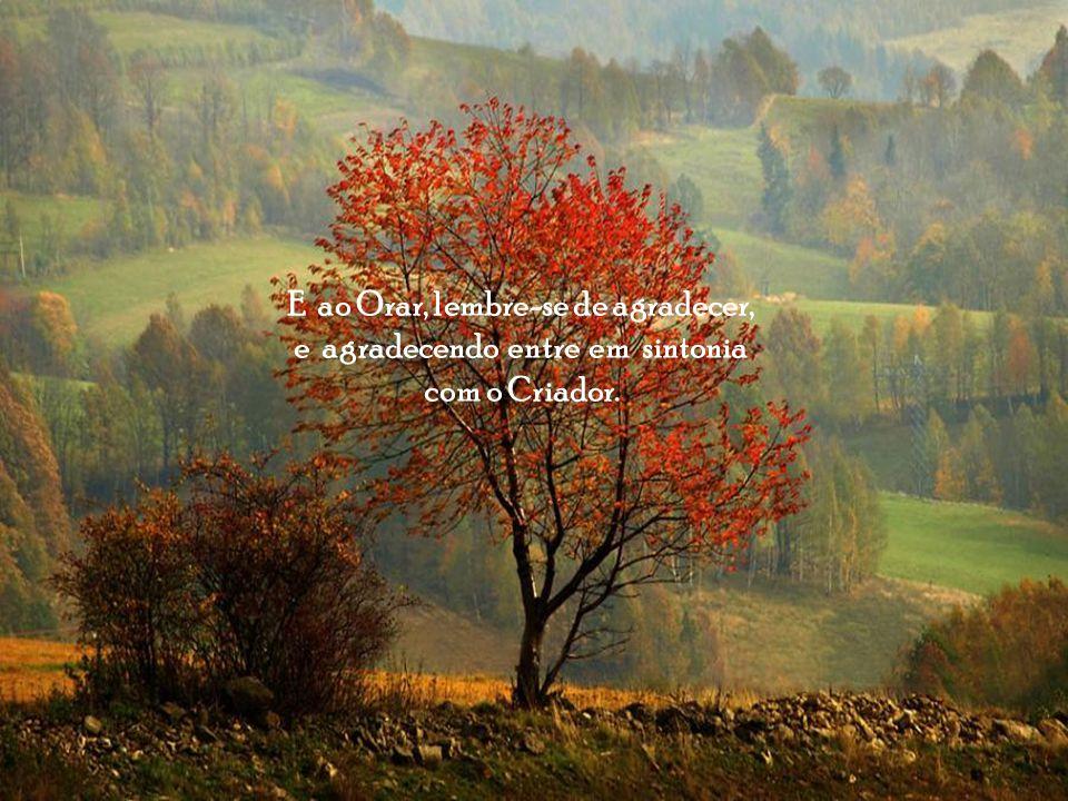 E ao Orar, lembre-se de agradecer, e agradecendo entre em sintonia