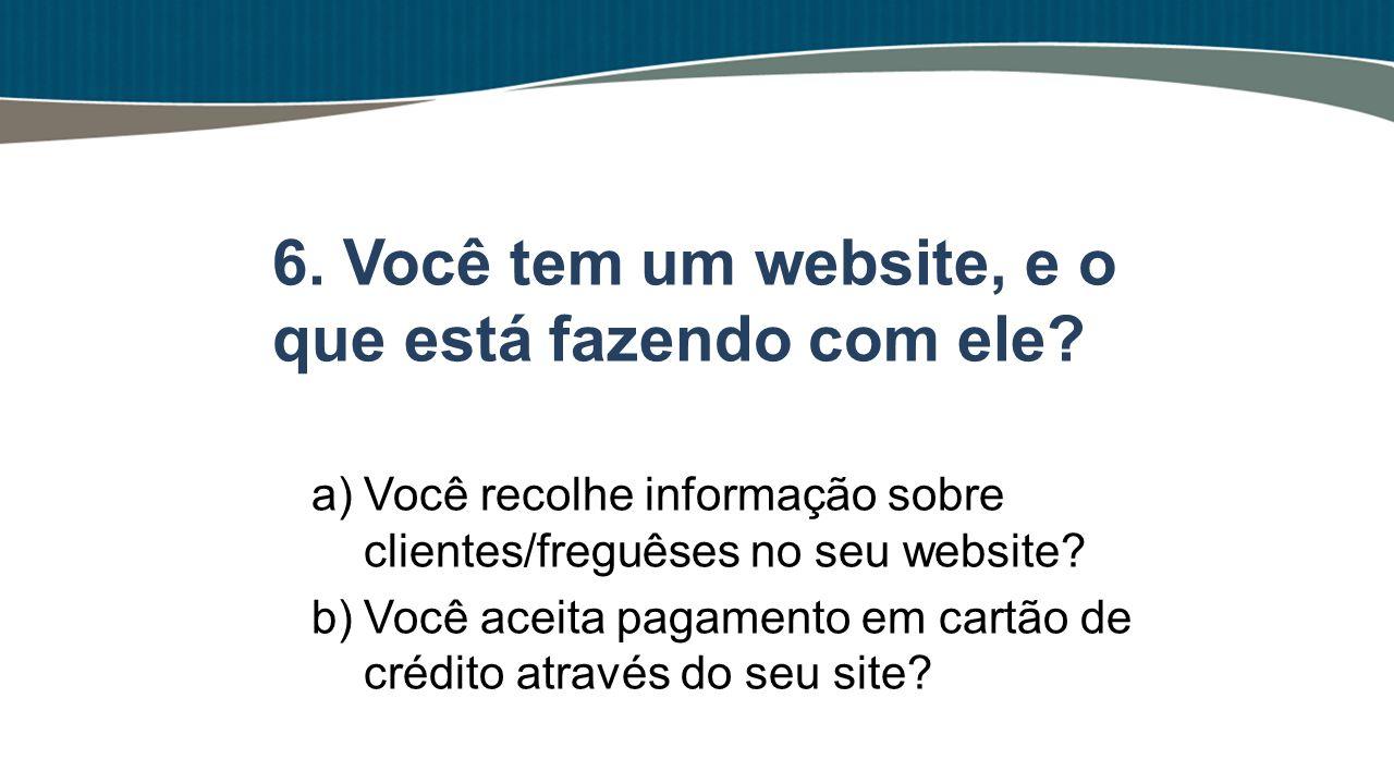 6. Você tem um website, e o que está fazendo com ele
