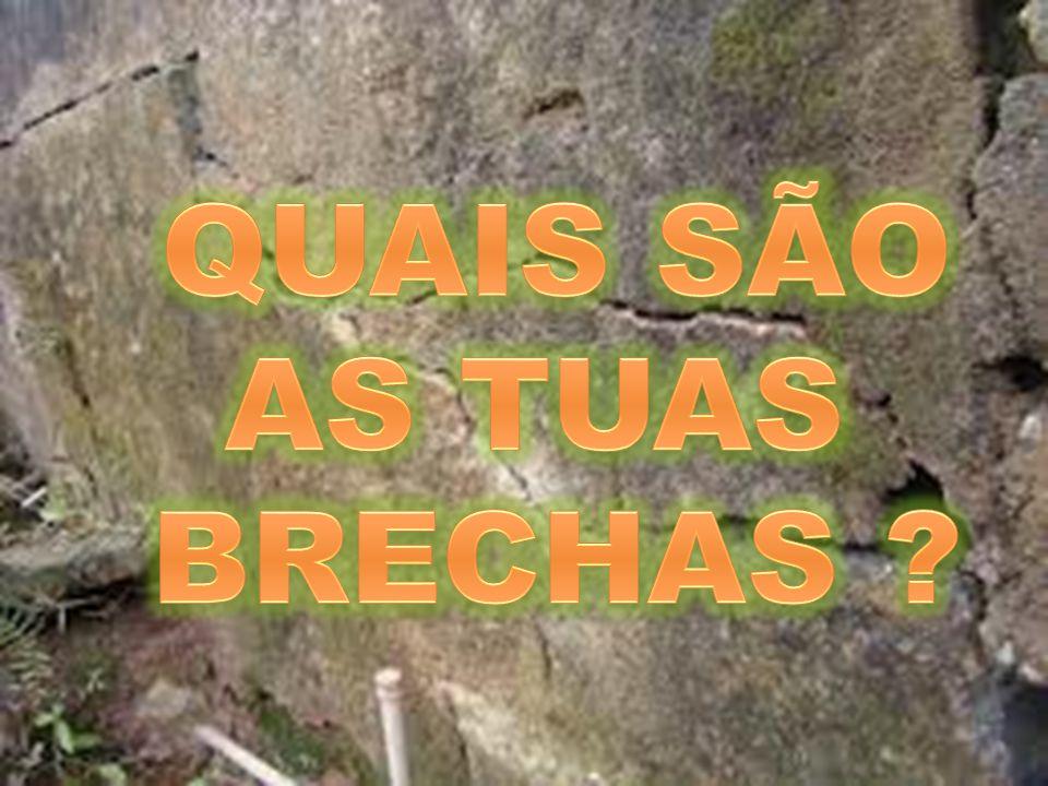 QUAIS SÃO AS TUAS BRECHAS