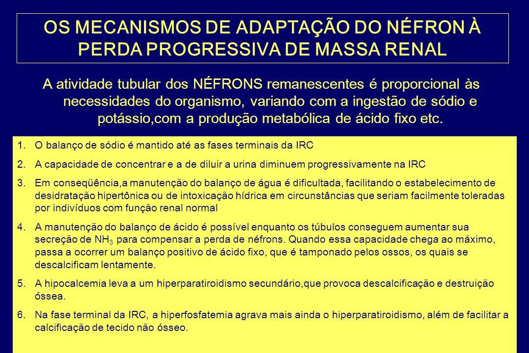 OS MECANISMOS DE ADAPTAÇÃO DO NÉFRON À PERDA PROGRESSIVA DE MASSA RENAL