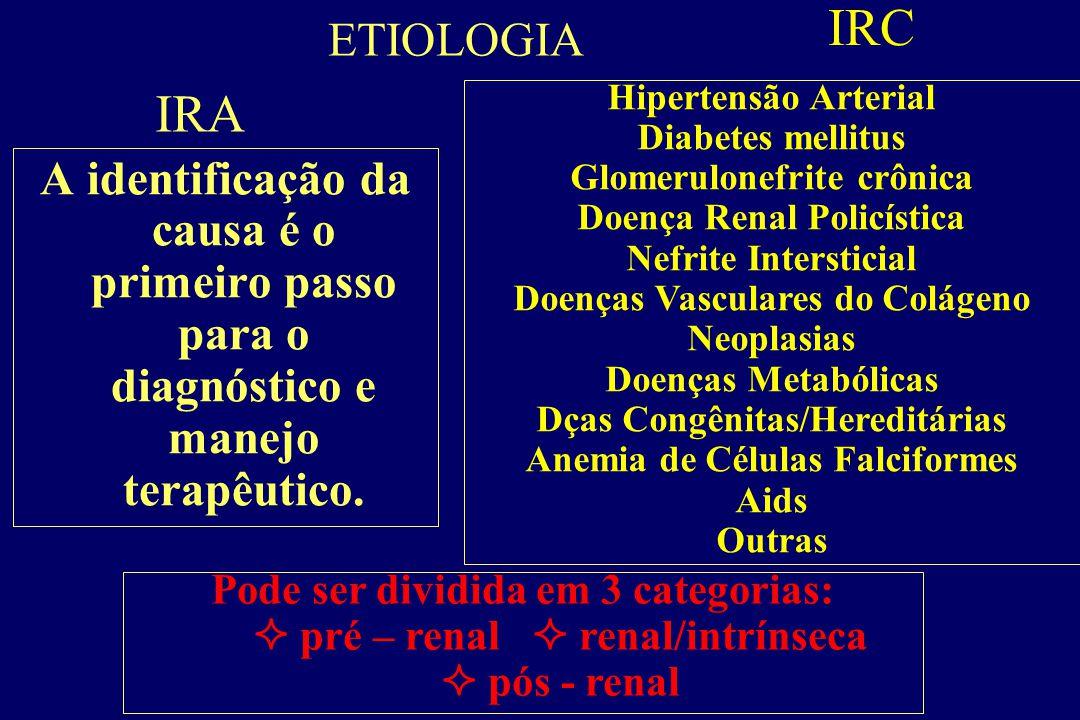 IRC ETIOLOGIA. IRA. Hipertensão Arterial. Diabetes mellitus. Glomerulonefrite crônica. Doença Renal Policística.