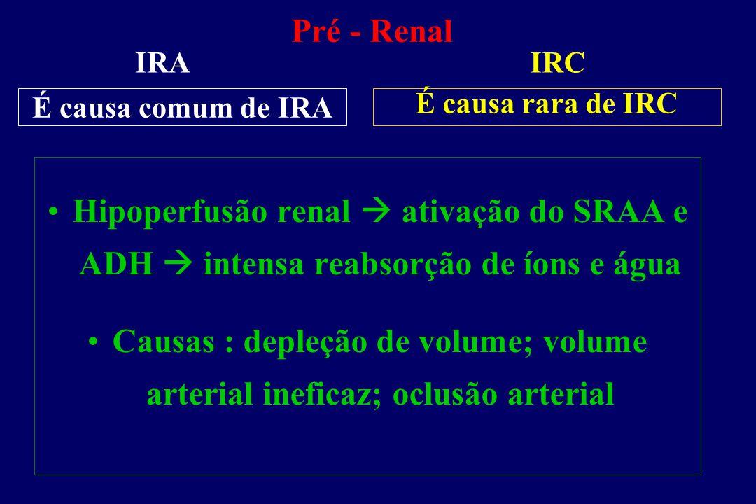 Pré - Renal IRA. IRC. É causa comum de IRA. É causa rara de IRC. Hipoperfusão renal  ativação do SRAA e ADH  intensa reabsorção de íons e água.