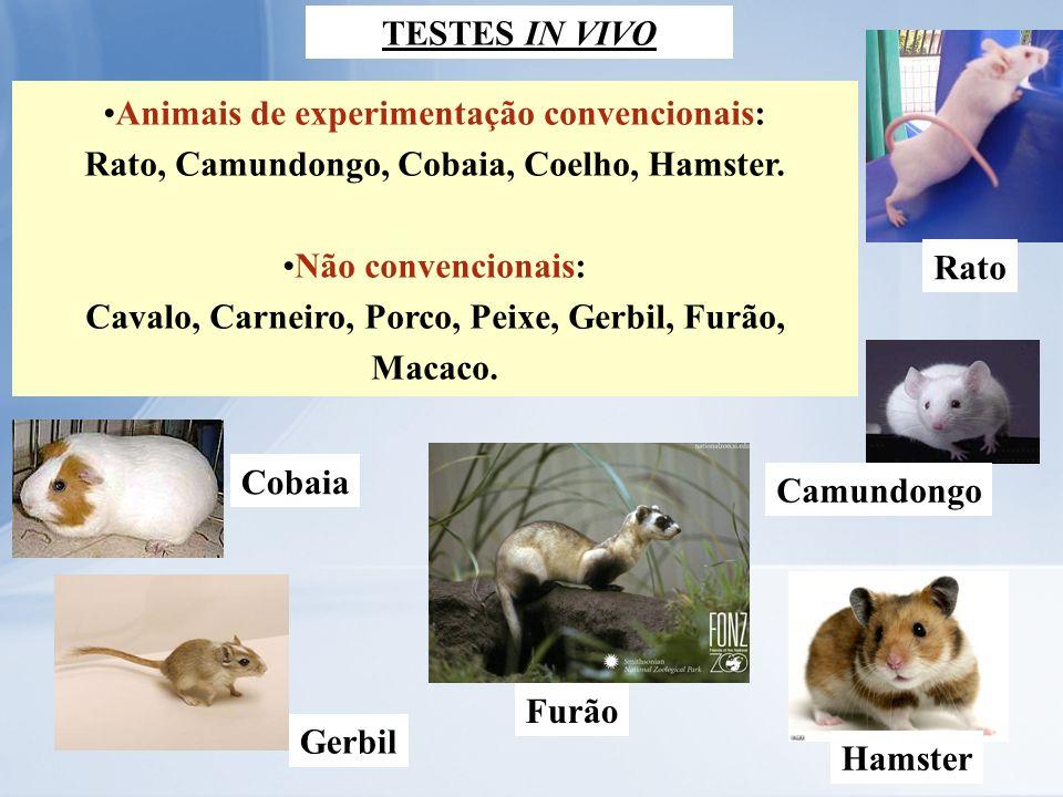 •Animais de experimentação convencionais: