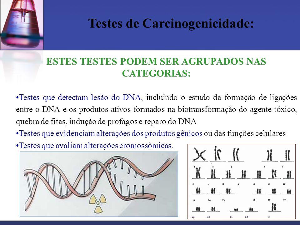 Testes de Carcinogenicidade: